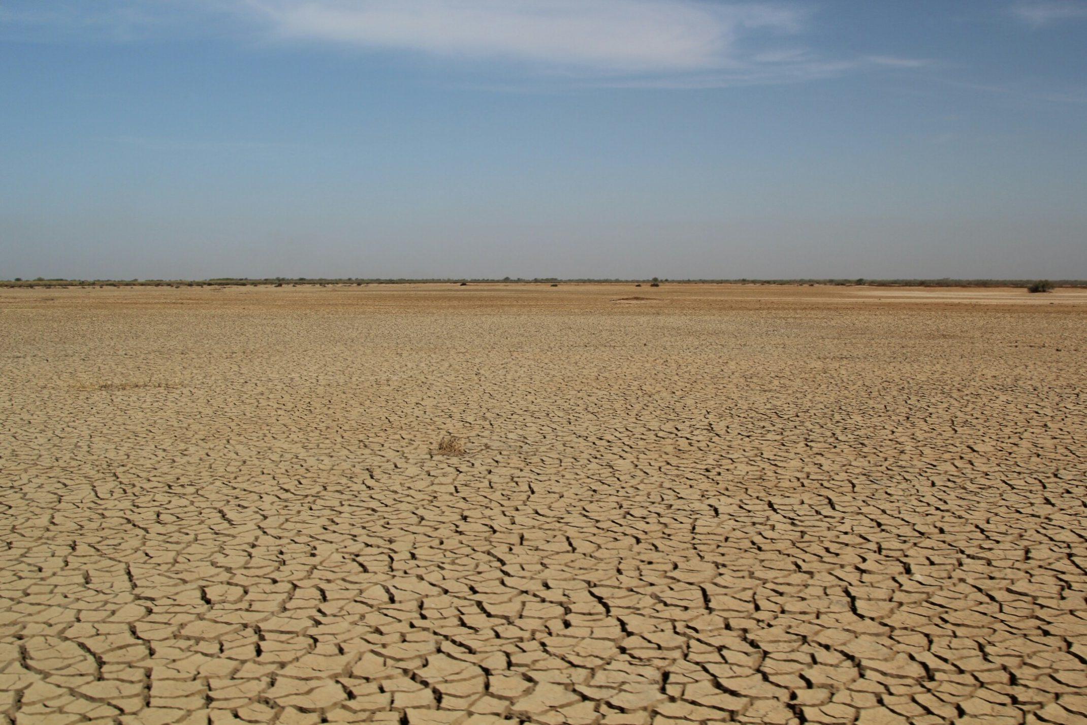 Senegal,suchy,spękany teren