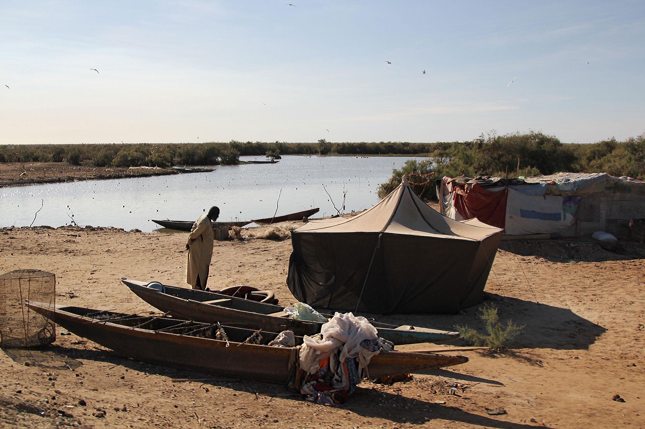 Mauretania.Park Narodowy Diawling.