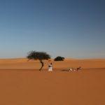 W drodze do Dakaru