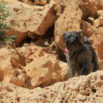 Jasiek i piaskowe formacje