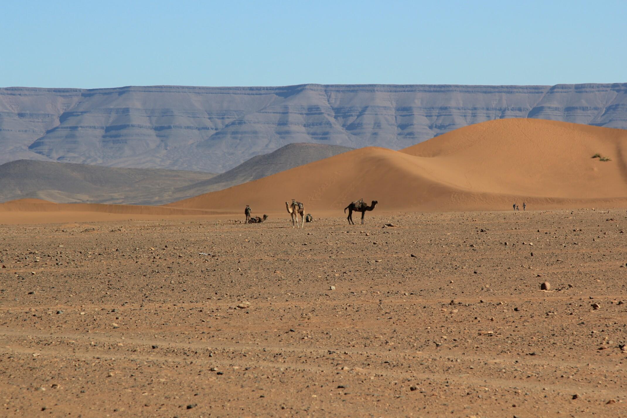 Sahara Ski