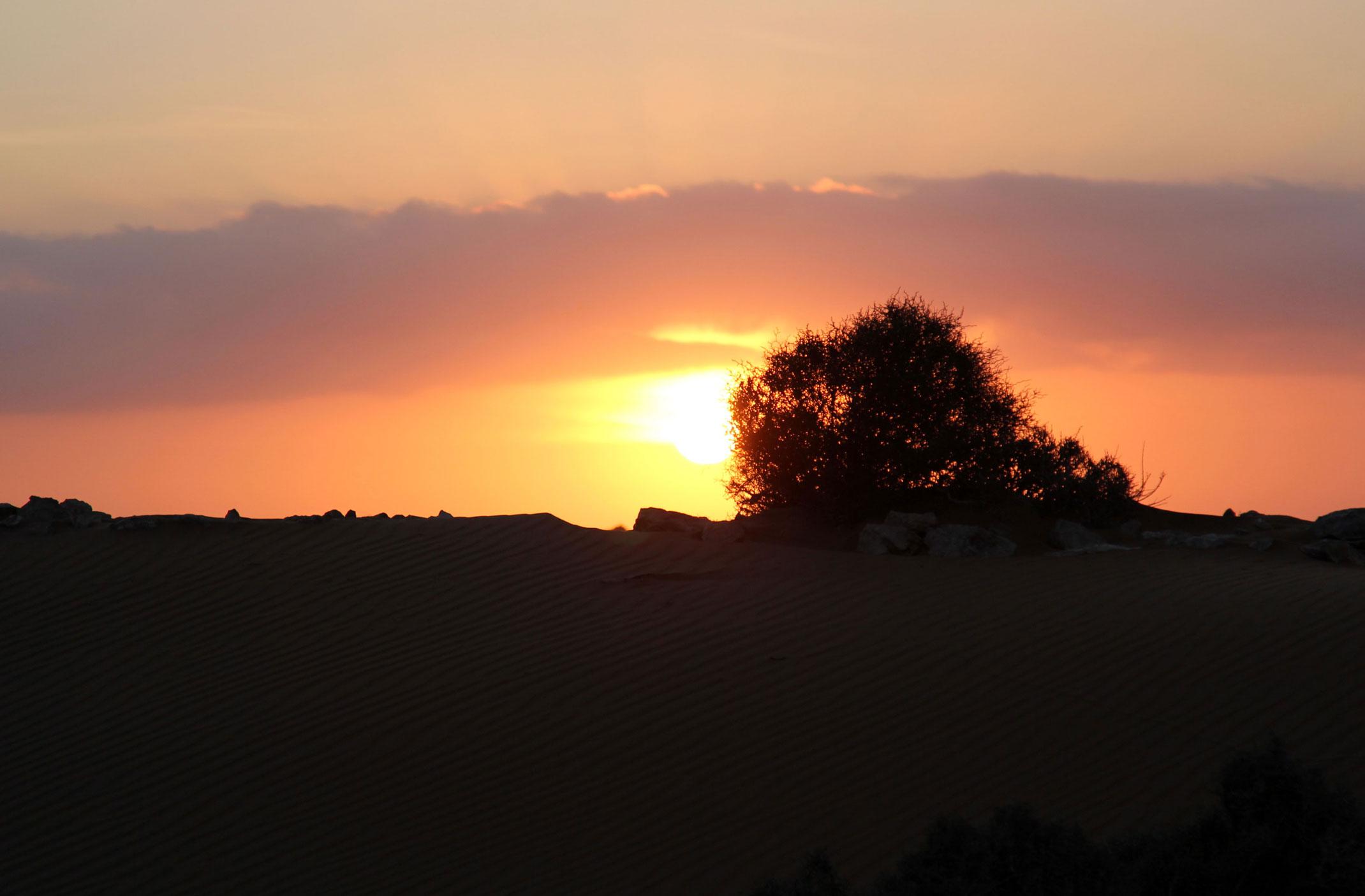 Sahara Zachodnia.Zachód słońca