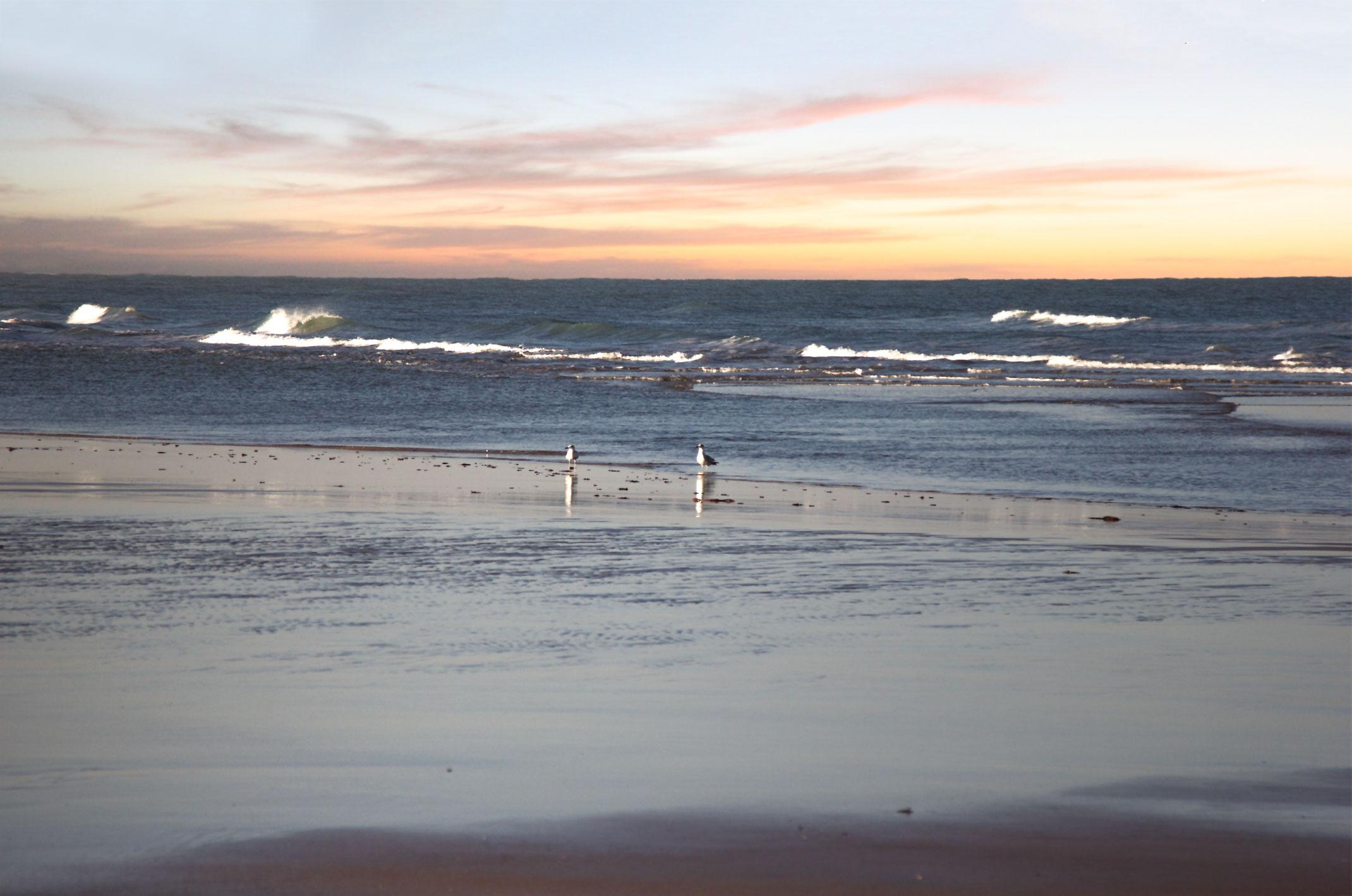 Piękna plaża w okolicy Laayoune