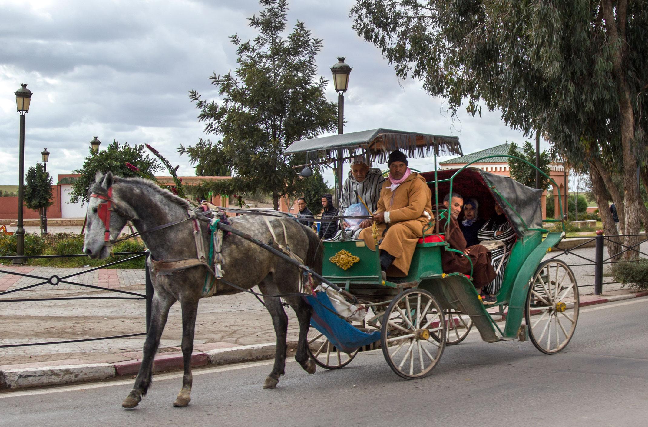 Maroko.Przejażdżka bryczką