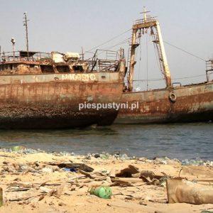 Wraki Mauretanii - Blog podróżniczy - PIES PUSTYNI