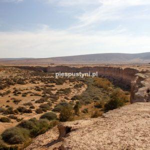 Wysoki klif Aoreory - Blog podróżniczy - PIES PUSTYNI