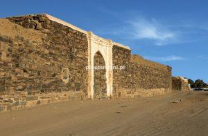Asmara - Blog podróżniczy - PIES PUSTYNI