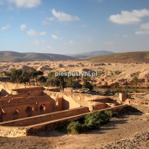Bou Jerif - Blog podróżniczy - PIES PUSTYNI