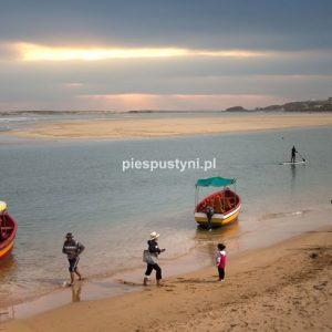 Laguna - Blog podróżniczy - PIES PUSTYNI
