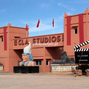 Studio Filmowe CLA - Blog podróżniczy - PIES PUSTYNI