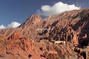W cieniu chmury - Blog podróżniczy - PIES PUSTYNI