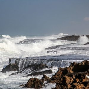 Nad Atlantykiem - Blog podróżniczy - PIES PUSTYNI