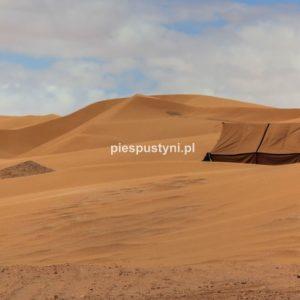 Namiot w kolorze piasku - Blog podróżniczy - PIES PUSTYNI