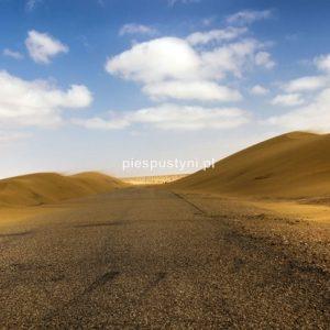 Zawiana droga - Blog podróżniczy - PIES PUSTYNI
