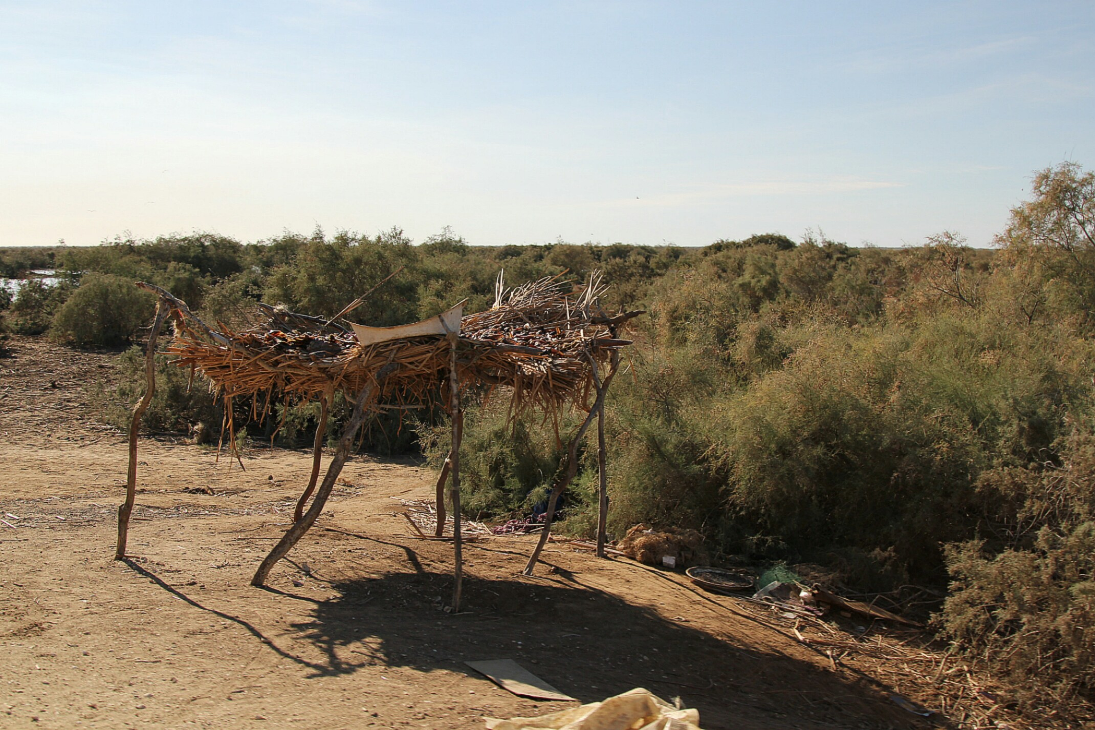 Mauretania,Parc du Diawling