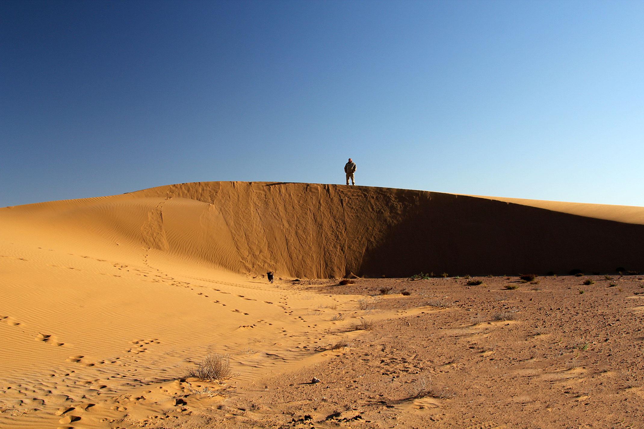 Sahara Zachodnia.Piaski pustyni.