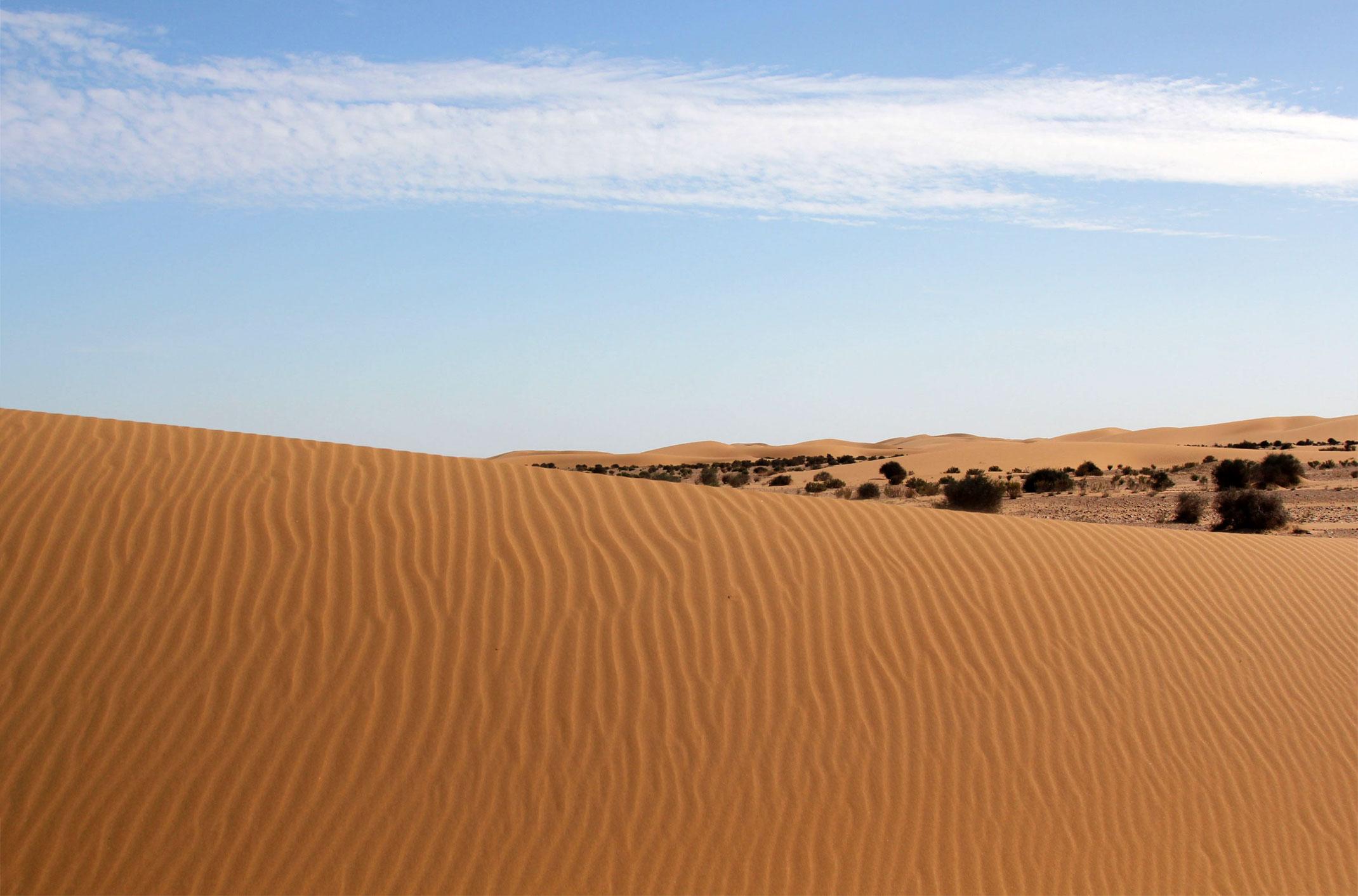 Sahara Zachodnia