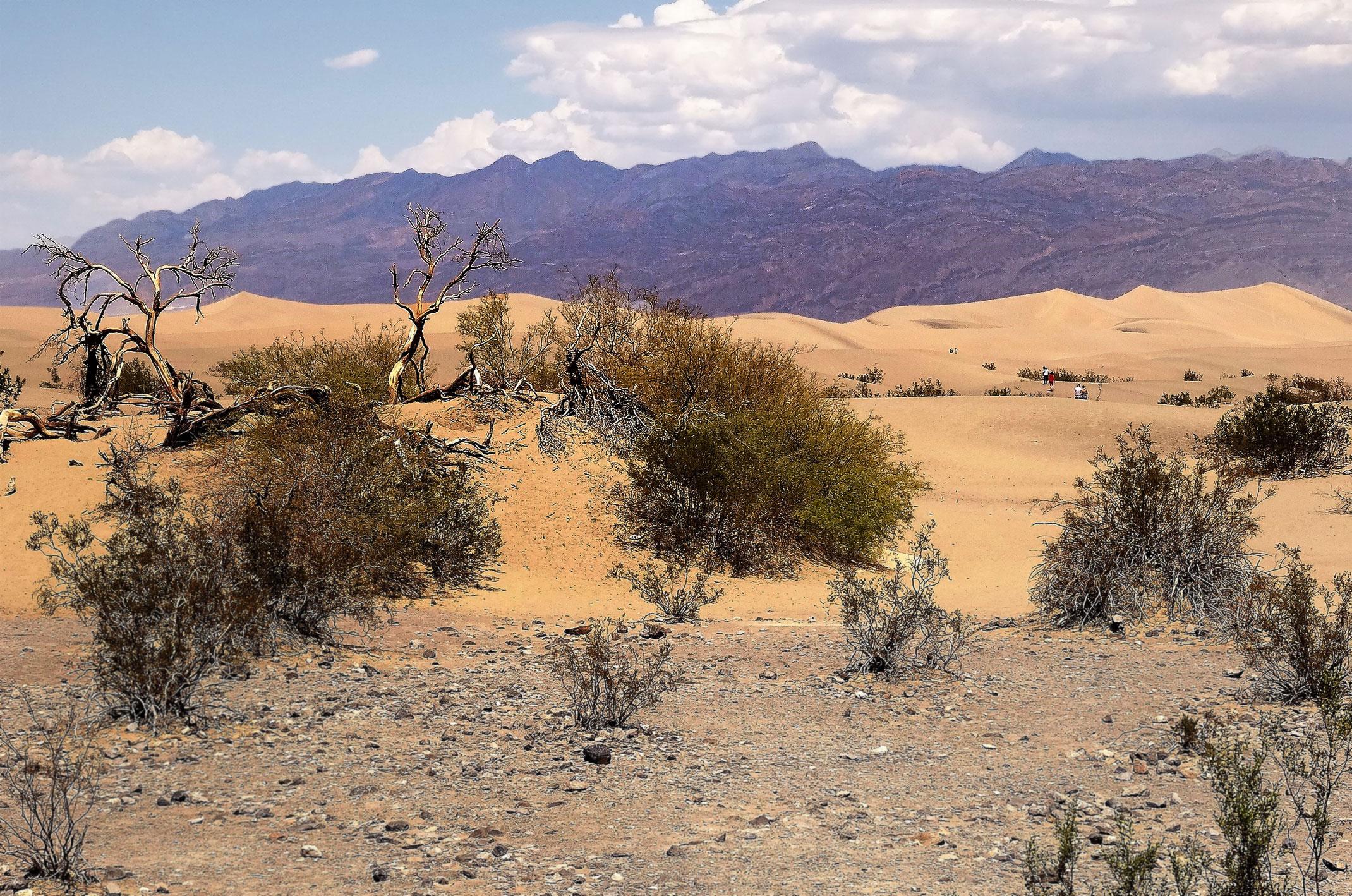 Dolina Śmierci wydmy