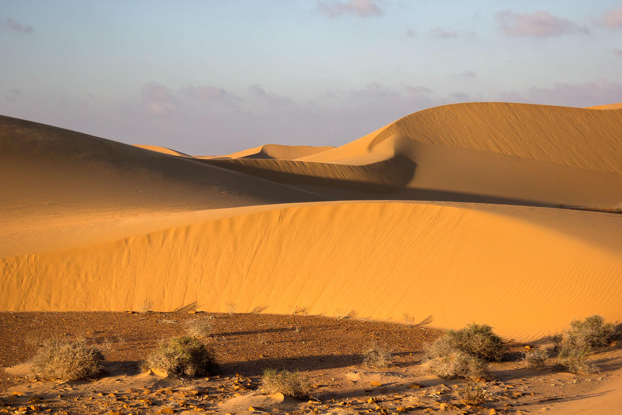 Maroko.Sahara Zachodnia,pustynia