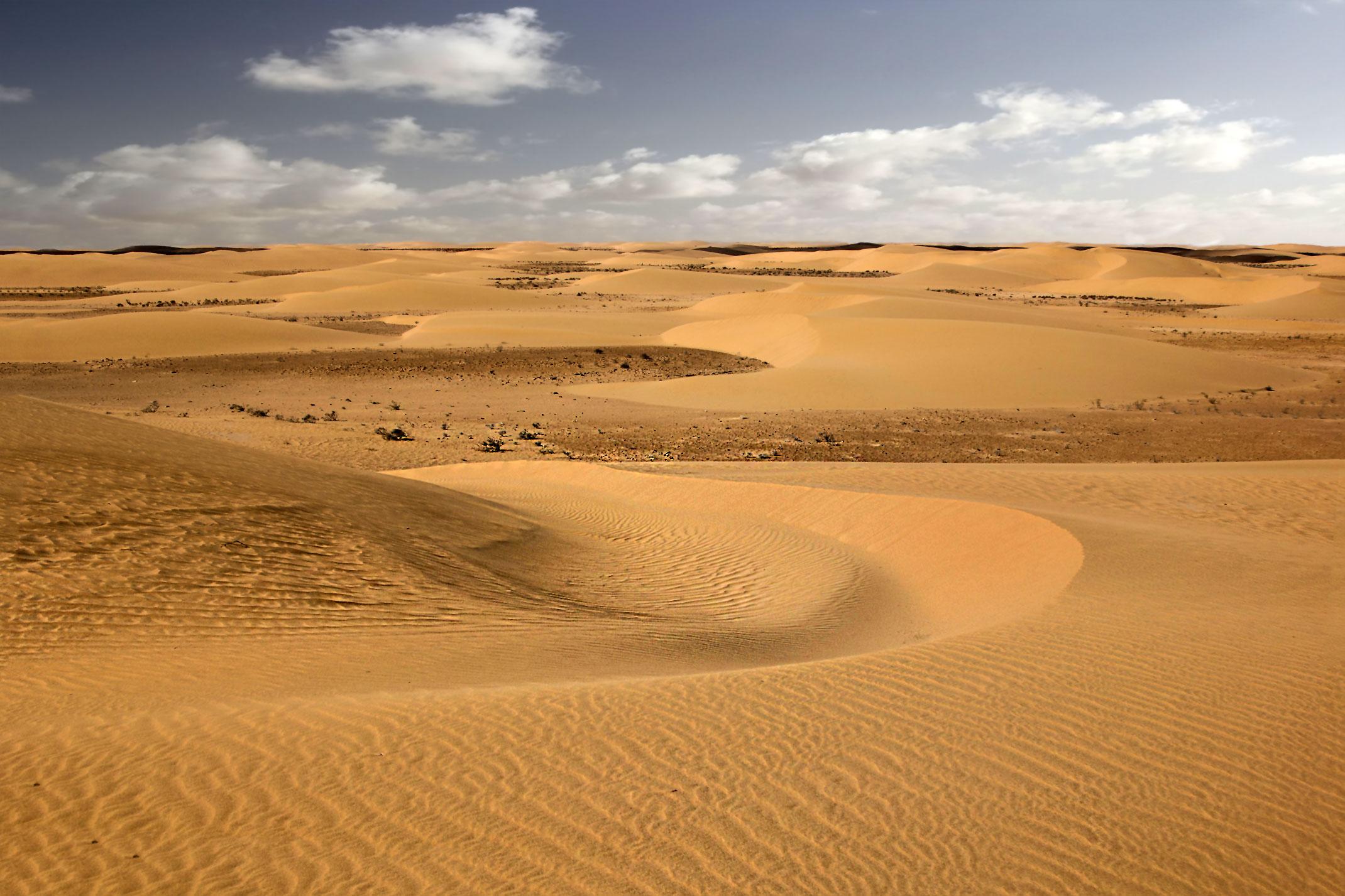 Piaski pustyni.Sahara