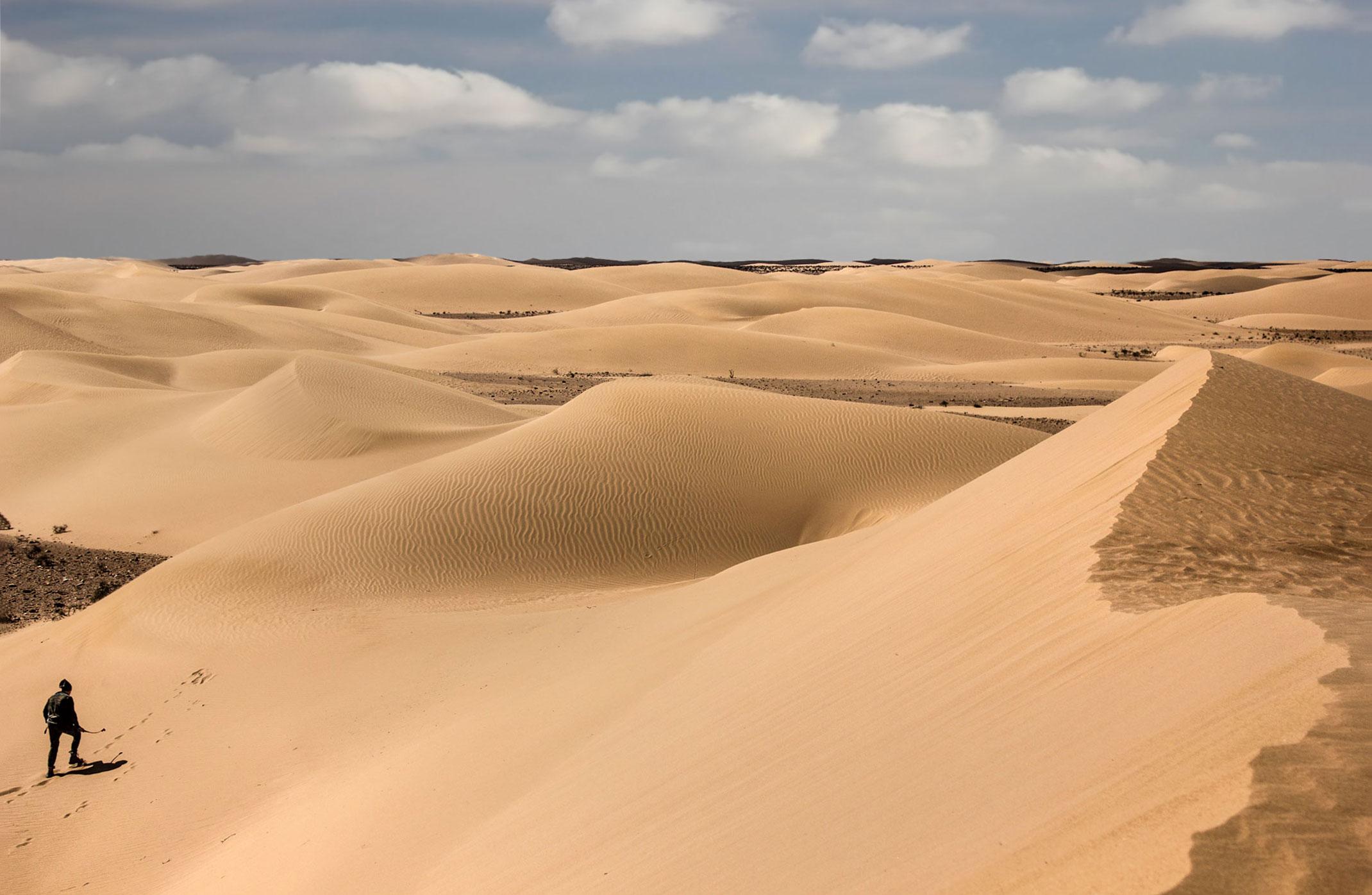 Sahara Zachodnia,piaski pustyni