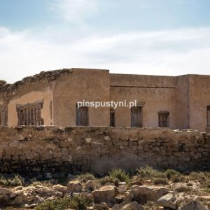 Fort Aoreora - Blog podróżniczy - PIES PUSTYNI