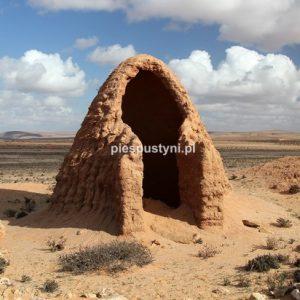 Gliniany domek - Blog podróżniczy - PIES PUSTYNI