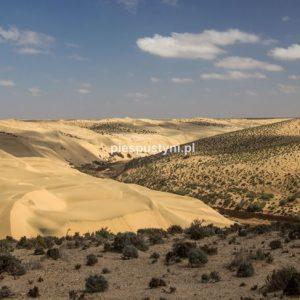 Oued Aoreora - Blog podróżniczy - PIES PUSTYNI