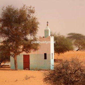 Pustynny meczet - Blog podróżniczy - PIES PUSTYNI