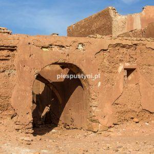 Brama fortu - Blog podróżniczy - PIES PUSTYNI