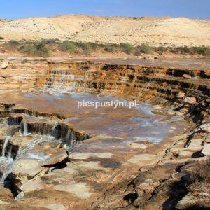 Khaoui Naam - Blog podróżniczy - PIES PUSTYNI