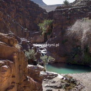 Wodospad - Blog podróżniczy - PIES PUSTYNI