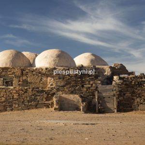 Zawiyya-Asmara - Blog podróżniczy - PIES PUSTYNI