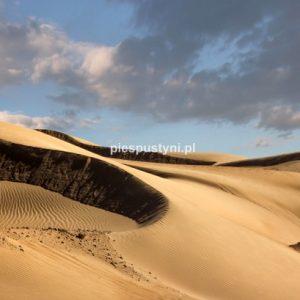Hula wiatr - Blog podróżniczy - PIES PUSTYNI