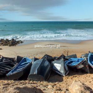 Widok na ocean - Blog podróżniczy - PIES PUSTYNI
