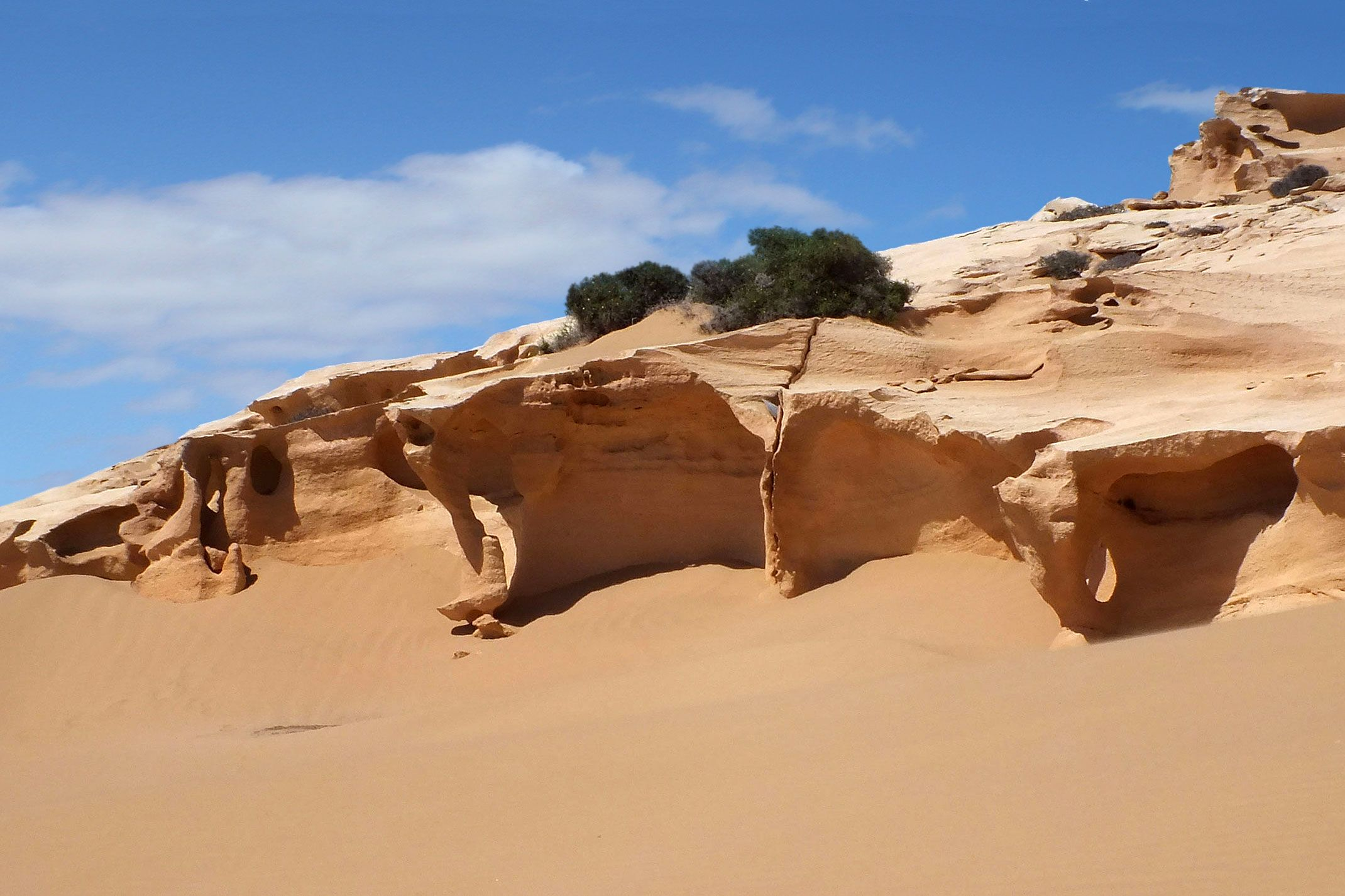 Sahara Zachodnia.piespustyni.pl