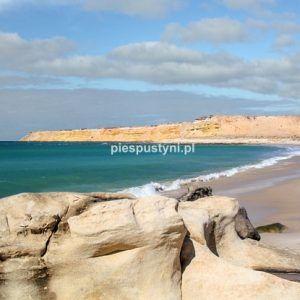 Pusta plaża w Portorico - Blog podróżniczy - PIES PUSTYNI