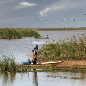 Rybacy - Blog podróżniczy - PIES PUSTYNI