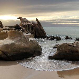 Saharyjska plaża - Blog podróżniczy - PIES PUSTYNI