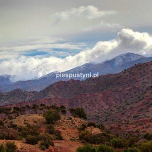 Widoczek z chmurami - Blog podróżniczy - PIES PUSTYNI