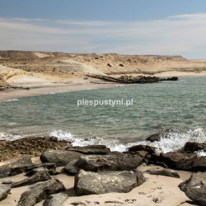 Na ładnej plaży - Blog podróżniczy - PIES PUSTYNI