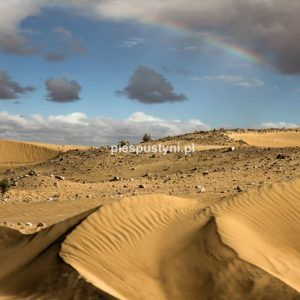 Tęcza nad Saharą - Blog podróżniczy - PIES PUSTYNI