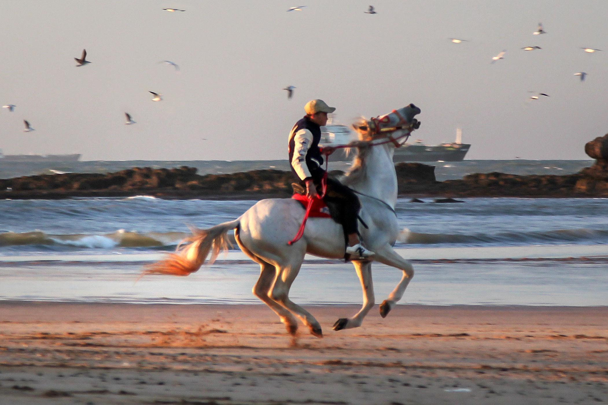 Al-Muhammadijja (Maroko