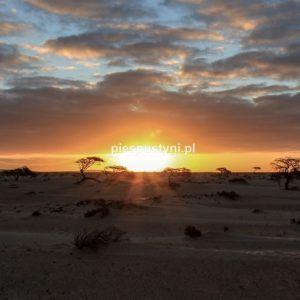 Zachód słońca na pustyni - Blog podróżniczy - PIES PUSTYNI