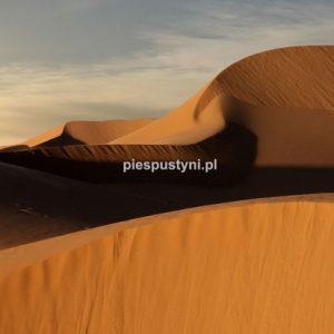 Piaskowe cienie - Blog podróżniczy - PIES PUSTYNI