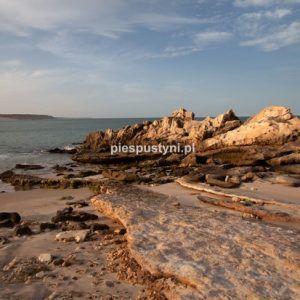 Ulubiona plaża - Blog podróżniczy - PIES PUSTYNI