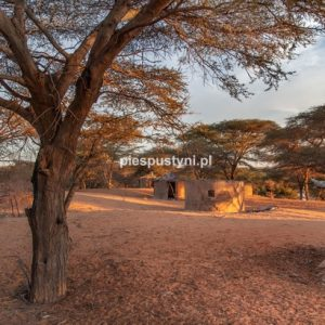 Auberge Tamorte Bukari - Blog podróżniczy - PIES PUSTYNI