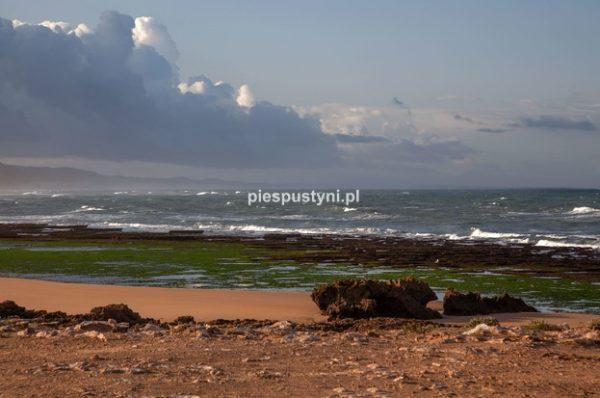 Moulay Bouzerktoun 1 - Blog podróżniczy - PIES PUSTYNI