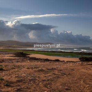 Moulay Bouzerktoun 4 - Blog podróżniczy - PIES PUSTYNI