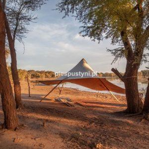Tamorte Bukari 2 - Blog podróżniczy - PIES PUSTYNI